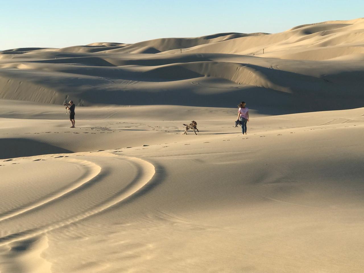 Dunes14